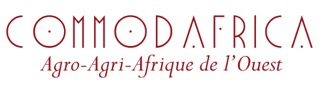 Logo Commodafrica